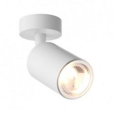 Потолочный светильник Zuma Line Tori 20016-WH